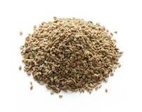 Ajowan (ajwain) zaden, Indisch kruid stock afbeeldingen