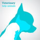 Ajuda veterinária Imagens de Stock