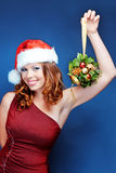 Ajudante de Santa Fotos de Stock