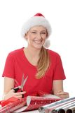 Ajudante de Santa Foto de Stock Royalty Free