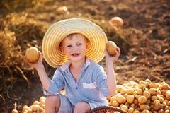 Ajudas da criança para tomar a colheita Imagens de Stock Royalty Free