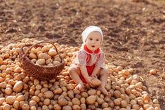 Ajudas da criança para tomar a colheita imagens de stock