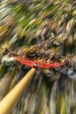 Ajuntando as folhas rapidamente fotos de stock