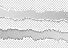 Ajustado rasg? el papel gris horizontal para el texto o el mensaje est? en el fondo blanco libre illustration