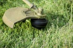 Ajustadores da aplicação Grama verde de sega usando uma linha de pesca ajustador Fotografia de Stock Royalty Free