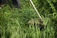 Ajustadores da aplicação Grama verde de sega usando uma linha de pesca ajustador Foto de Stock