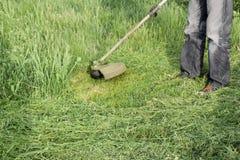 Ajustadores da aplicação Grama verde de sega usando uma linha de pesca tr Imagens de Stock Royalty Free