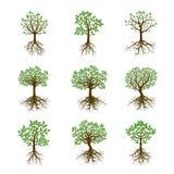 Ajuste árvores da cor Ilustração do vetor ilustração royalty free
