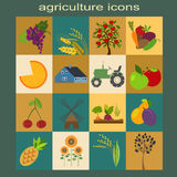 Ajuste a agricultura, cultivando ícones Fotos de Stock Royalty Free