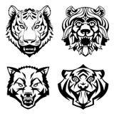 AJUSTE as cabeças do vetor dos animais selvagens Imagem de Stock