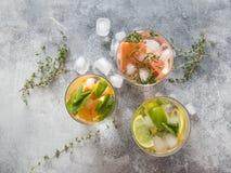 Ajuste bebidas frias do verão com o citrino diferente nos vidros em um fundo cinzento O cocktail com toranja, laranja, cal do lim Imagens de Stock Royalty Free