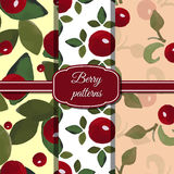 Ajuste Berry Patterns Imagem de Stock
