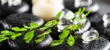 Ajuste bonito dos termas da samambaia, do gelo e de velas verdes do galho no zen Imagem de Stock