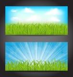 Ajuste cartões de verão com grama, fundos naturais Fotografia de Stock Royalty Free