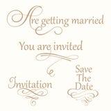 Ajuste a coleção de inscrição da caligrafia do casamento ilustração royalty free