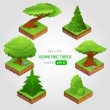 Ajuste com a árvore isométrica no estilo dos desenhos animados Fotos de Stock Royalty Free