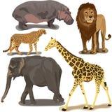 Ajuste com animais africanos ilustração royalty free