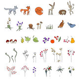 Ajuste com animais bonitos wildlife Cogumelos, flores e folhas da floresta Imagens de Stock Royalty Free