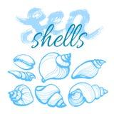 Ajuste com as conchas do mar e as palavras no fundo branco lettering Vetor Imagens de Stock