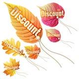 Ajuste com as etiquetas da venda do outono Eps 10 Fotografia de Stock Royalty Free