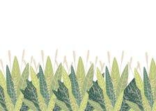 Ajuste com elementos florais e folhas os elementos decorativos para suas folhas do projeto rodam ilustração lisa floral do vetor  Imagens de Stock
