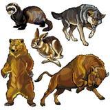 Ajuste com os animais selvagens de Europa ilustração stock
