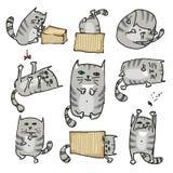 Ajuste com os gatos bonitos em várias poses Vetor Foto de Stock Royalty Free