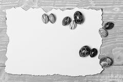 Ajuste com os ovos coloridos no papel queimado Conceito feliz de Easter imagem de stock