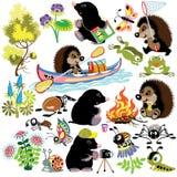 Ajuste com toupeira e ouriço no acampamento ilustração stock