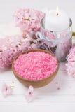 Ajuste cor-de-rosa dos termas e do bem-estar Fotografia de Stock Royalty Free