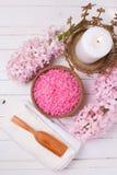 Ajuste cor-de-rosa dos termas e do bem-estar Fotografia de Stock