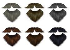 Ajuste cores diferentes do bigode do vetor Imagem de Stock