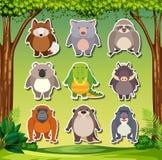 Ajuste da etiqueta animal ilustração royalty free