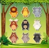 Ajuste da etiqueta animal ilustração do vetor