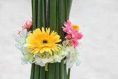 Ajuste da flor Foto de Stock Royalty Free