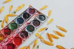 Ajuste das aquarelas misturado fotografia de stock