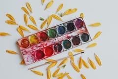 Ajuste das aquarelas misturado imagem de stock