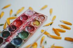 Ajuste das aquarelas misturado imagem de stock royalty free