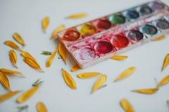 Ajuste das aquarelas misturado fotos de stock