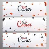 Ajuste das bandeiras vermelhas e pretas do caviar Fundos deliciosos do marisco Ilustração do vetor do caviar Natural e saudável ilustração do vetor
