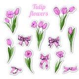 Ajuste das etiquetas com esboço colorido tirado mão das flores, das folhas cor-de-rosa e das curvas da tulipa isoladas no fundo b ilustração do vetor