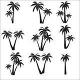 Ajuste das silhuetas das palmas ilustração stock