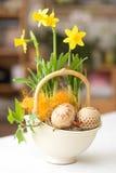 Ajuste de Easter imagem de stock royalty free
