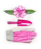 Ajuste de jardinagem cor-de-rosa com flores, ferramentas e luvas no fundo branco Imagem de Stock