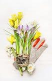 Ajuste de jardinagem da mola com flores, solo e luvas do trabalho, vista superior Foto de Stock