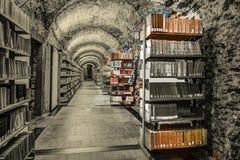 Ajuste de la biblioteca con los libros y el material de lectura Foto de archivo libre de regalías