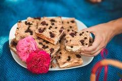 Ajuste de la comida campestre en prado Fotografía de archivo libre de regalías