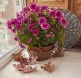 Ajuste de la tabla de Pascua con el pollo y las flores Imágenes de archivo libres de regalías