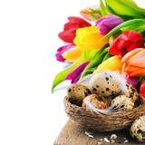 Ajuste de Pascua con los huevos y los tulipanes de codornices Fotos de archivo libres de regalías