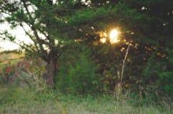 Ajuste de Sun en una granja Imágenes de archivo libres de regalías